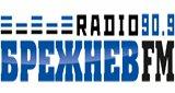 Брежнев FM